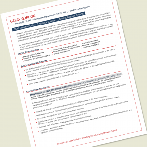 CEO Resume Writing Example